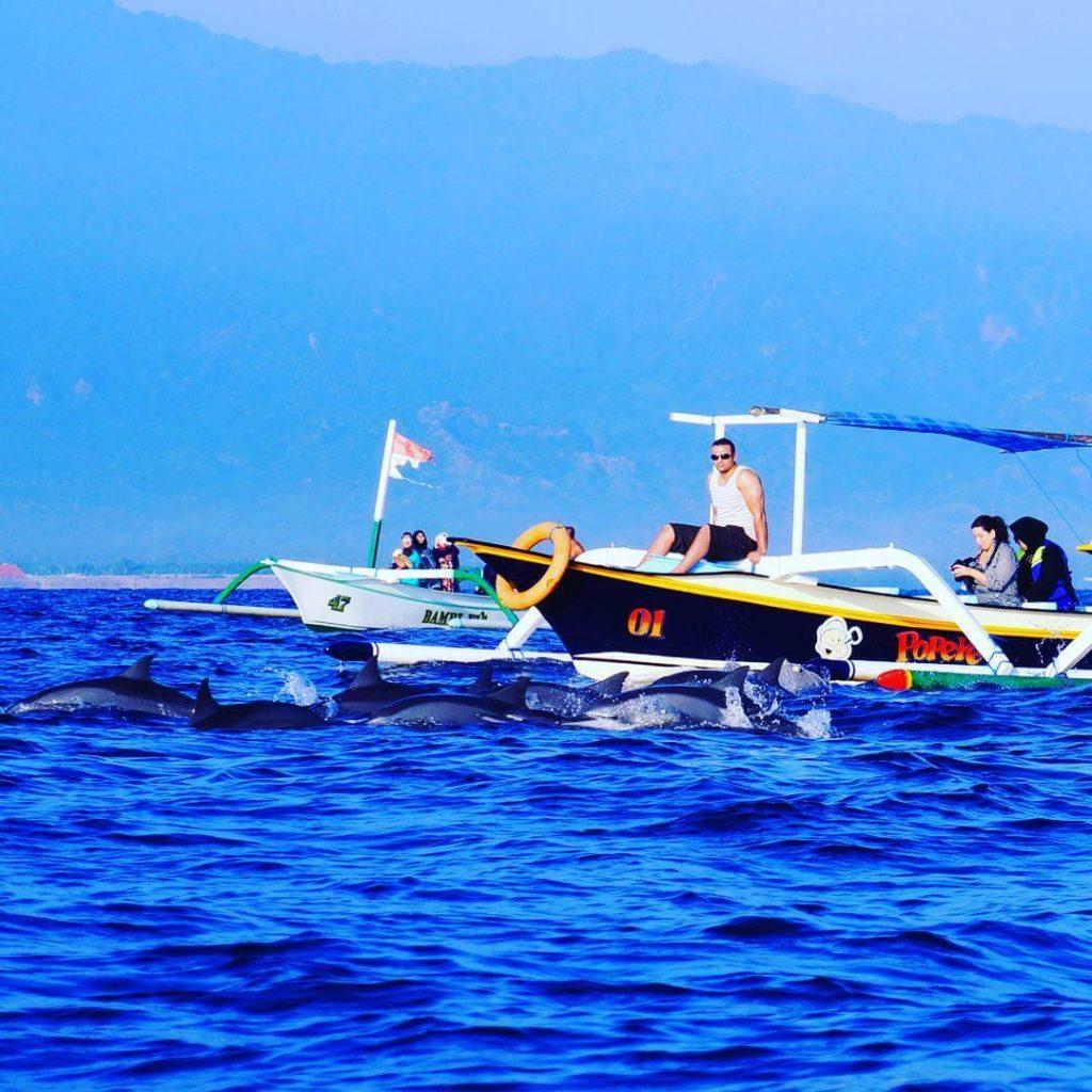 Harga Sewa Perahu di Lovina