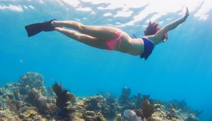 Keindahan bawah laut pulau menjangan
