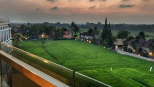 Evitel Resort 1